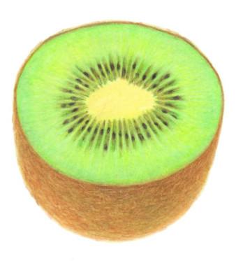 kiwi191129.jpg